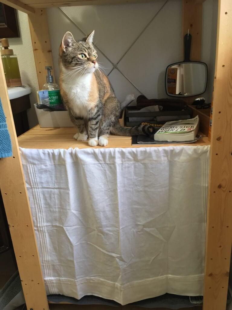 bathroom litter box - IKEA hack